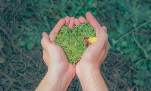 Blog Umweltschutz 300x180 - Eine Zeitreise auf zwei Rädern …